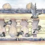 """""""Pigeons"""" by joannasteege"""