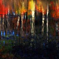 Linwood Pond Reflection
