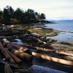 """Gabriola Island shoreline"" by AndrewJames"