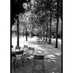 """""""Jardin du Luxembourg"""" by gwpics"""