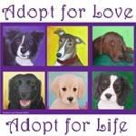 """adoptforlife"" by CarolNesbitt"