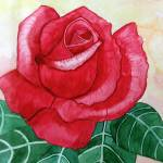 """Big Rose"" by Christella"