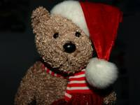 Oh, Christmas BEAR
