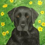 """blacklab"" by CarolNesbitt"