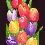 """Tulips Up Close"" by Christella"