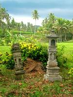 Balinese Rice Field Shrines