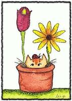 cat in flower pot