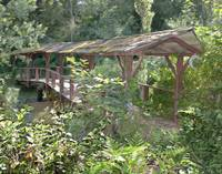 Coal Creek Footbridge_IMG_8333