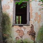 """""""Through the Window"""" by LivingGaia"""