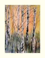 New Year's Tangle of Birches