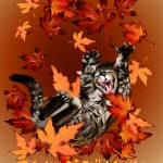 """The Joy Of Fall Leaves"" by Lotacats"
