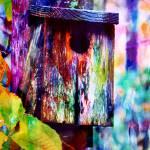 """Birdhouse"" by lchik"