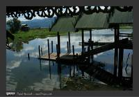 inle_lake_jumping_cat_monestary6