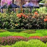 """Lanarch Castle Gardens, NZ"" by mjphoto-graphics"