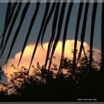 """""""Silhouete"""" by SantaRosa"""