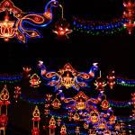 """Little-india-Lights"" by Geoffspeak"