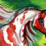 """Koi Pinto"" by EquineArtTreasures"