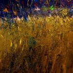 """Blades Of Grass"" by RuthPalmer"