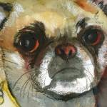 """Ginger Pug Bug, Watercolor Painting Animal Dog Art"" by schulmanart"