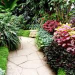 """""""garden walkway"""" by BrookeFowler"""