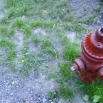 """Hydrant"" by jeffphoto"
