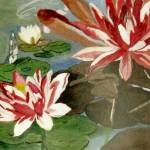 """""""Koi amid the Water Lilies"""" by lmeaux2"""