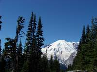 Mt. Rainier Framed