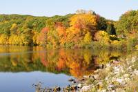 NY Fall Foliage and Lake