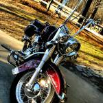 """Harley Davidson Soft Tail"" by Katrina_Wilhelm"