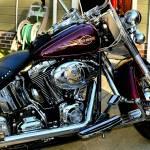 """Harley Davidson"" by Katrina_Wilhelm"