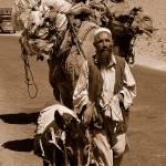 """Kuchi Elder: On the road again, Afghanistan"" by DezineZone"