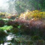 """""""Wetland Watercolor"""" by LydiaGaebeBishop"""