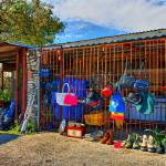 """""""Roadside Sale on Mission Trail"""" by TomZimmer"""