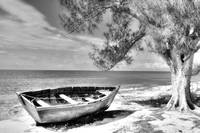 Beached Boat BW