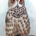 """african eagle owl 1992"" by cabartbycindybeck"