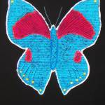 """Butterfly"" by bishe"