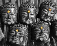The Five Eyes of Buddha