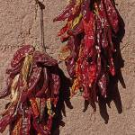 """Santa Fe Chillies Red"" by kphotos"