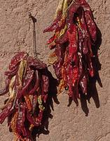 Santa Fe Chillies Red