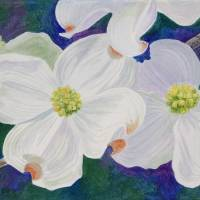 Dogwood at Twilight Art Prints & Posters by Linda Wolff