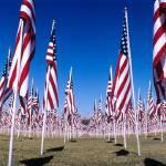 """American Flags"" by JohnKit"