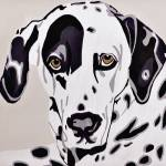 """Dalmation"" by sladeroberts"