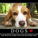"""""""Dogs"""" by allenpatrick"""