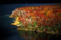 Autumn Colors in Lake Guillelmo, Patagonia, Argent
