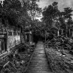 """""""Path Of The Forgotten"""" by jonsheer"""
