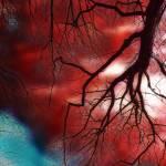 """""""Arterial"""" by KameraKat"""