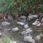 """creek"" by oneblondemop"