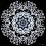 """""""Snowy Branch Snowflake"""" by annesmandalas"""
