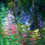 """""""Giverny spirit XXXVI"""" by Woodsman"""