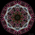 """Pink and White Neon Mandala"" by annesmandalas"